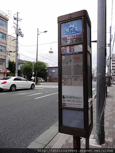 DSC02524_副本.jpg