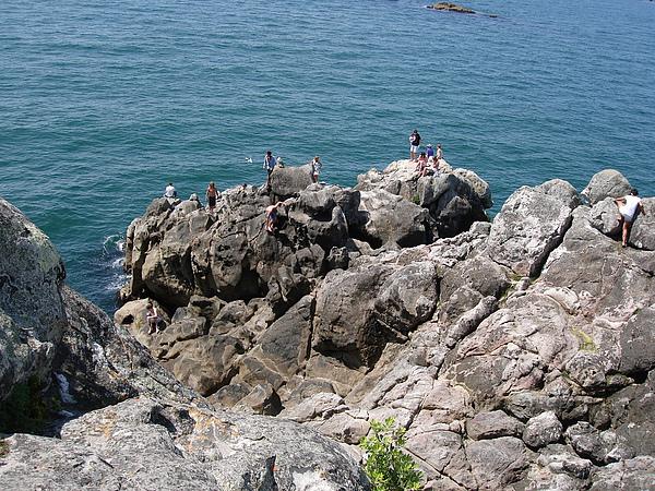 豔陽下許多人享受大海