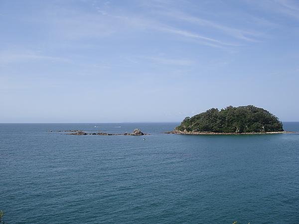 有熱帶島嶼的fu