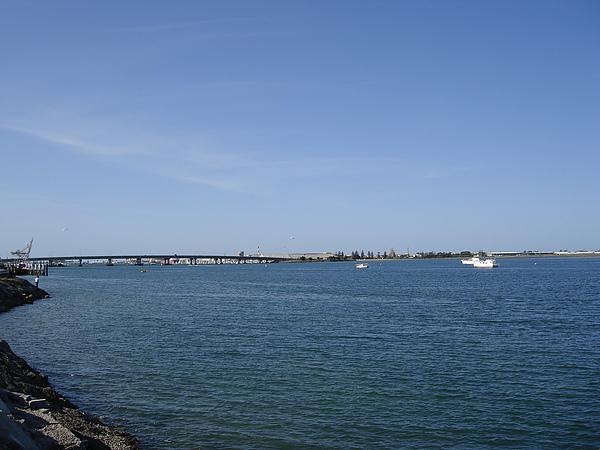 Tauranga市區邊的港口