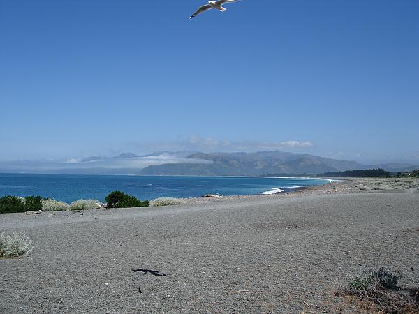 海景永遠迷人