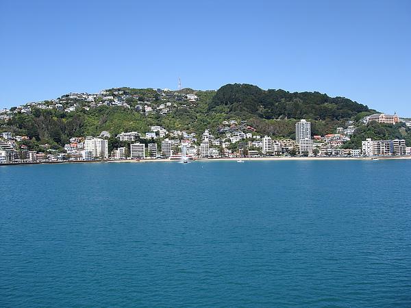 港口邊的Wellington也是那麼美