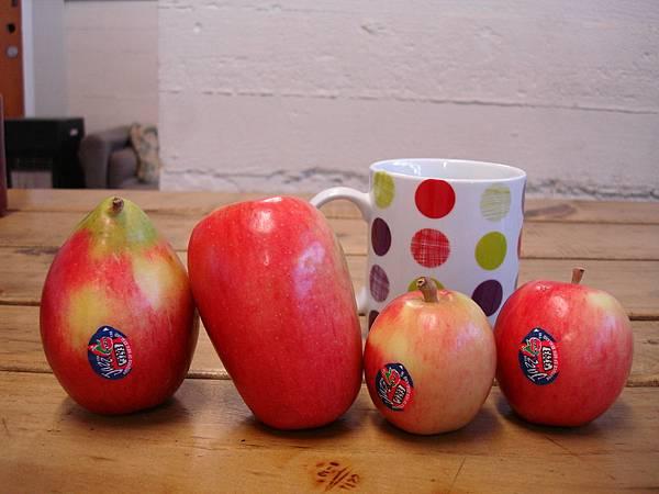 企鵝蘋果、長蘋果、迷你蘋果