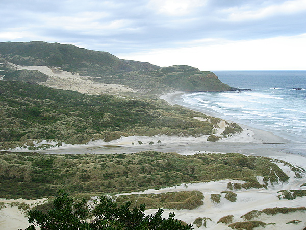 Sandfly Bay真的很多沙