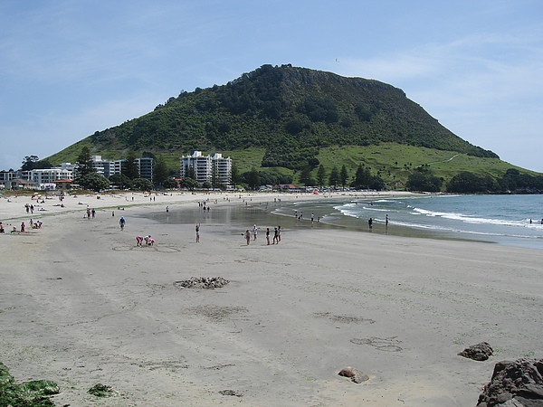 這座小山就是Mt Maunganui