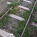 鐵軌上的白白.jpg
