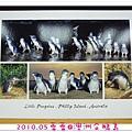 2010.05蕾蕾@澳洲企鵝島.JPG