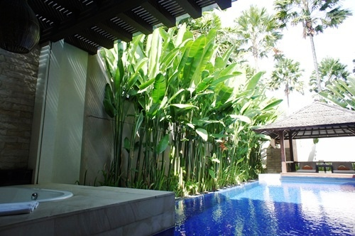 De Daun 1 Bed Room Deluxe Pool Villa
