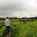 Puri Wulandari Morning Walk