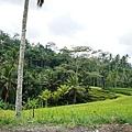 Gunung Kawi 卡威山