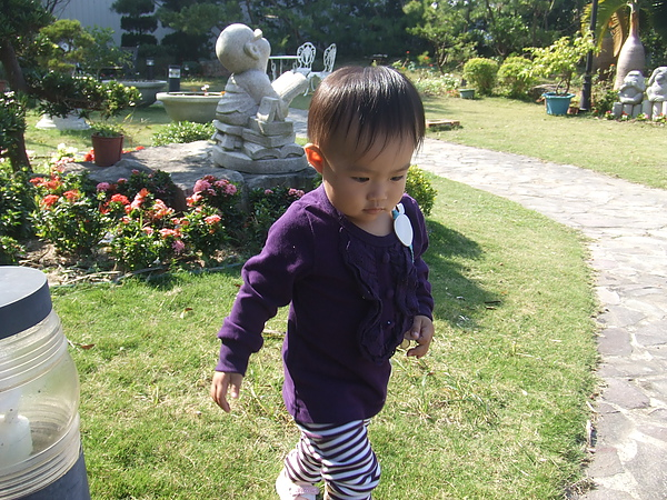 妮可花園38