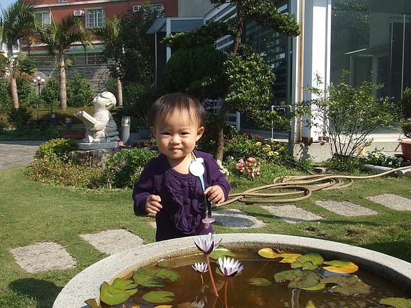 妮可花園34