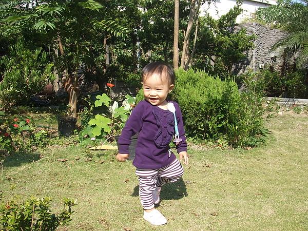 妮可花園37