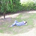 翰林大哥正悠閒躺在草地上~