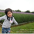 980419新屋花海農場015.jpg