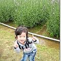 980419新屋花海農場022.jpg