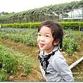 980419新屋花海農場027.JPG