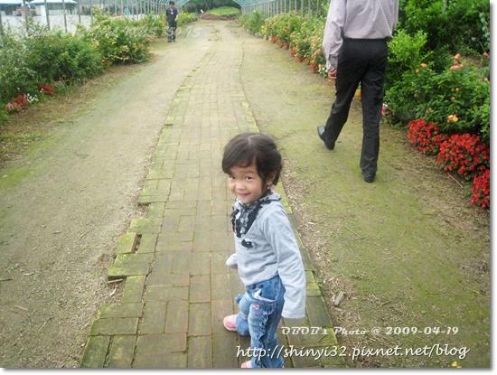 980419新屋花海農場051.JPG