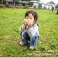 980419新屋花海農場058.JPG