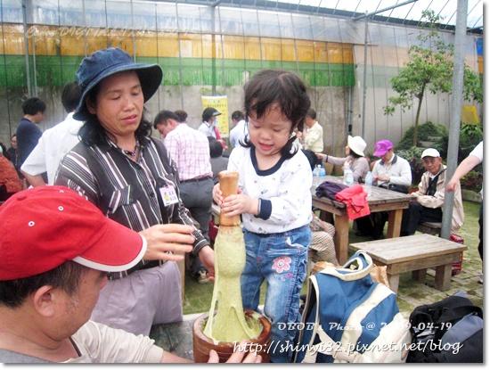 980419新屋花海農場077.JPG