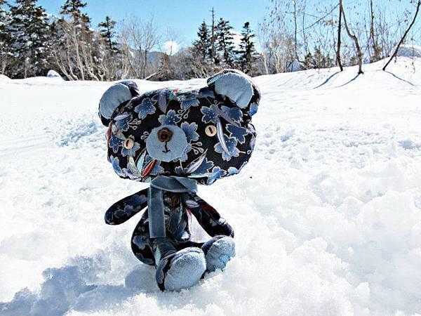991110和風藍櫻旅の小熊2.jpg