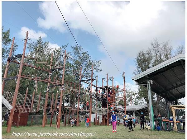 TYAC-桃園青年體驗學習園區-高低空體驗設施_12.jpg