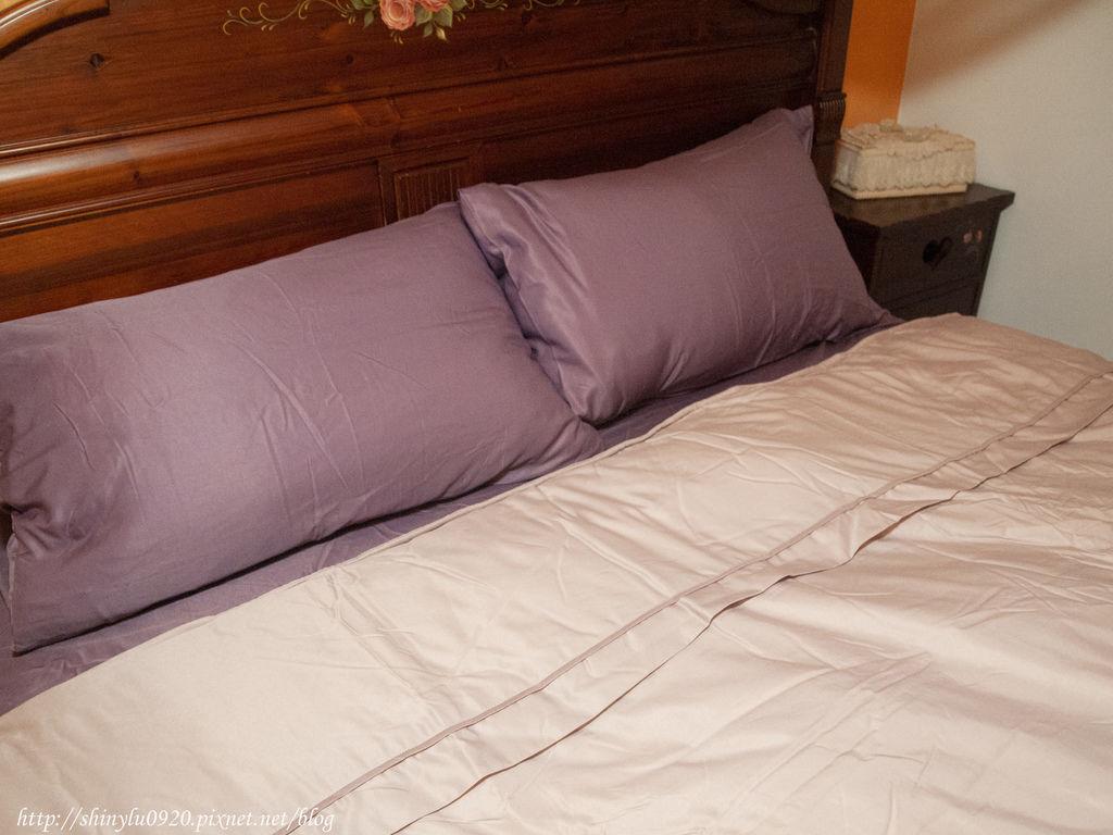 愛利斯寢飾3M天絲床包兩用被套4.jpg