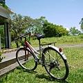咖啡廳旁的腳踏車,感覺好悠閒