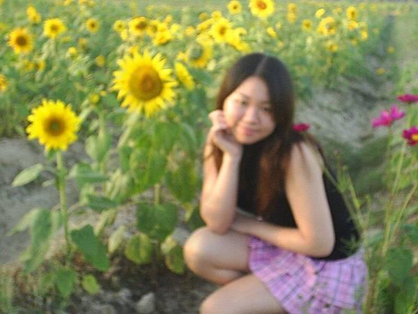太陽花女孩