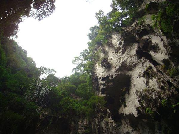 12月馬來西亞 行 047.jpg
