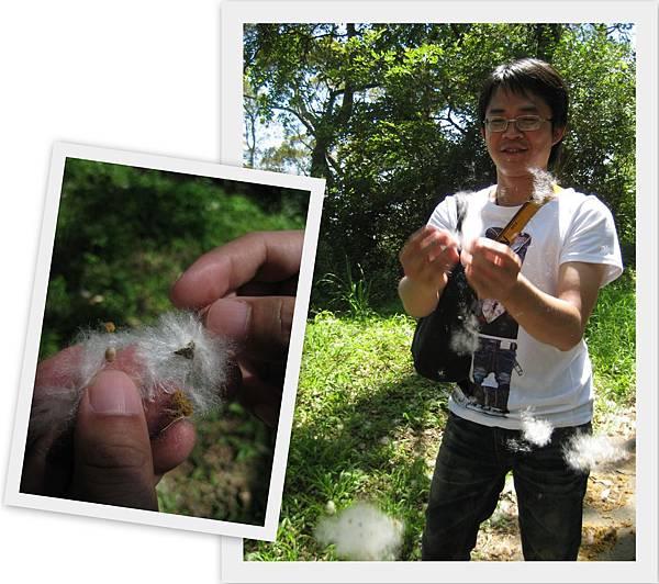 June 6th, 2011  飛牛牧場21.jpg