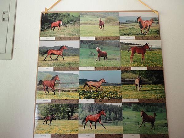 Horse-riding Club Slupenec