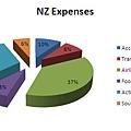 NZ Expenses Diagram