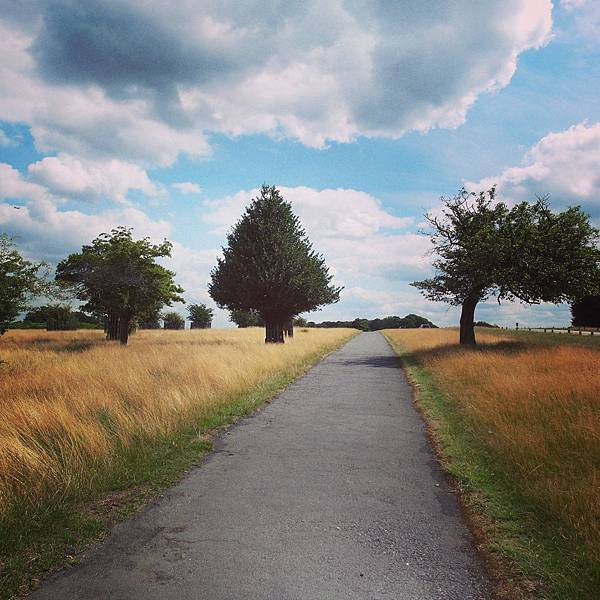 26.英國Richmond Park