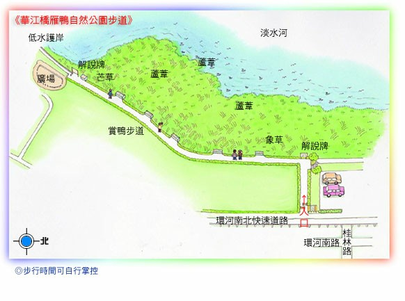 華江橋雁鴨自然公園步道