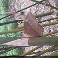 20140623金門 植物園 10