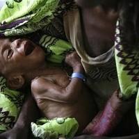 33567-global-crisis-may-worsen-africas-hunger-200.jpg