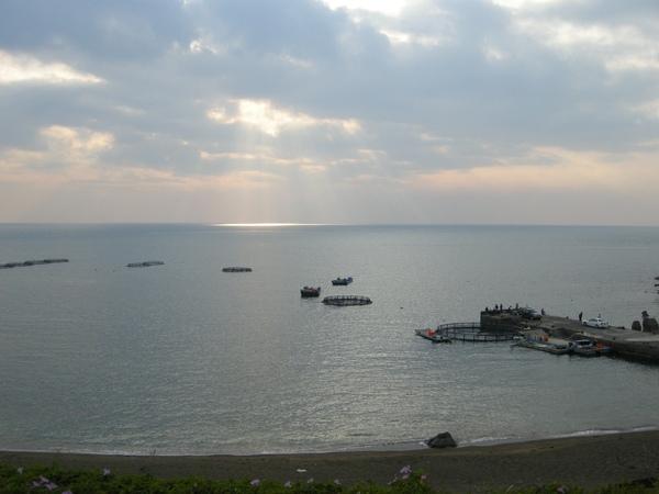 海上的養殖場