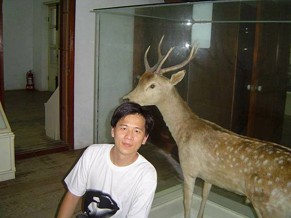 梅花鹿與我.JPG