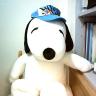 戴帽帽的snoopy.png