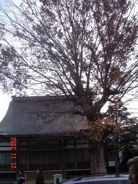 名古屋週邊風景18
