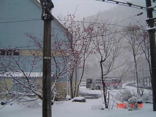 黑部立山雪景18