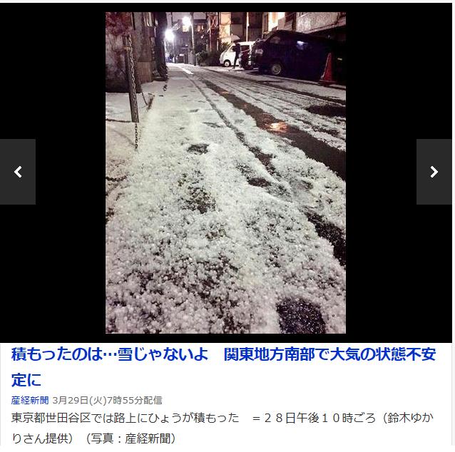 東京雪.png