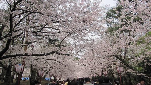1弘前公園.jpg