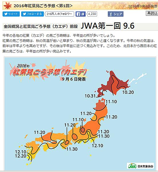 JWA906.png