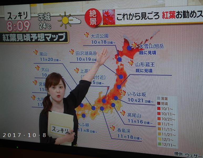 日本新聞.png