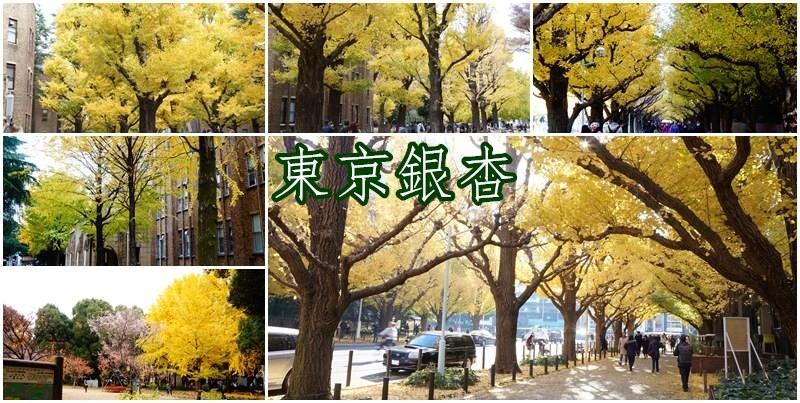 東京銀杏2.jpg