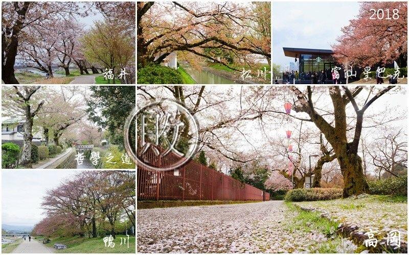 櫻花18過季.jpg