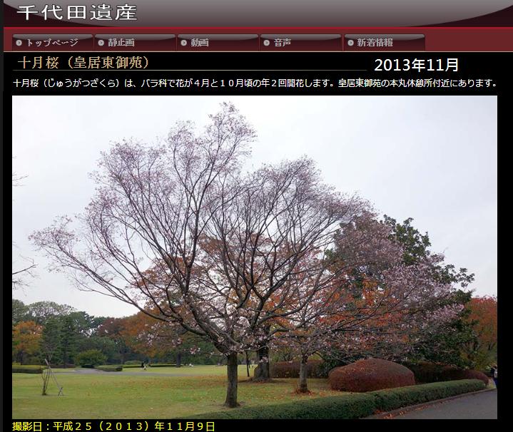 2013千代田.png