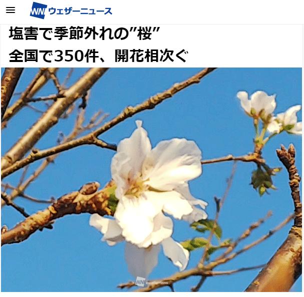 WN報導.png